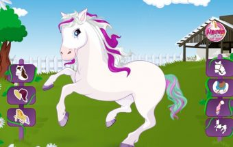 Išrinkite arkliukui Poniui papuošimus
