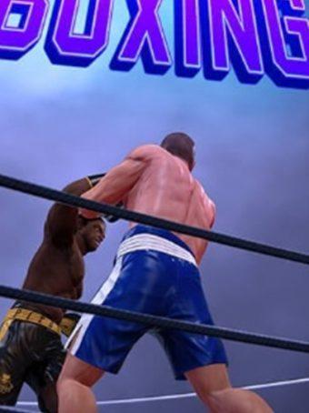 Boksas - Bokso žaidimas su kovos elementais. Muštynės ir boksas viename.
