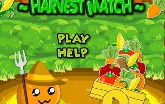Žaidimas apie daržovių derlių, Rinkite daržoves vienodos spalvos.