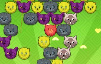 Žaidimas vaikams - katinai