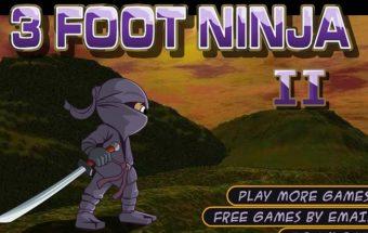 Nemokamas online žaidimas – Nindzė 2.