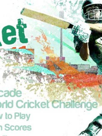 Žaidimų mėgėjams skirtas kriketo žaidimas 2015 m.
