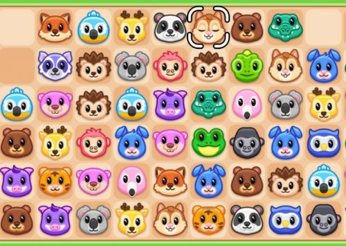 Sujungimai internete – gyvūnai