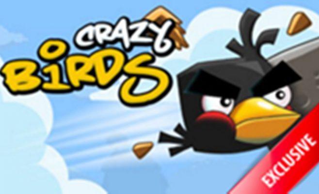Žaidimas vaikams - Angry Birds paukščiai.