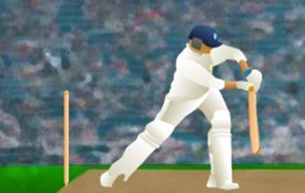 Sporto žaidimas apie kriketą. Kriketo čempionatas